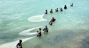 Vissen bij Zanzibar